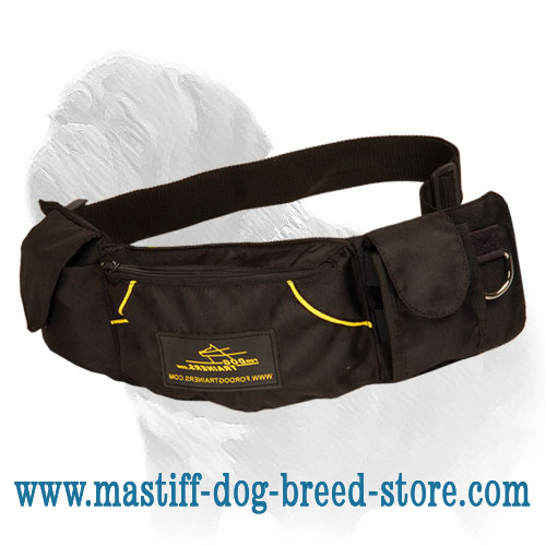 Convenient dog training pouch made of durable nylon