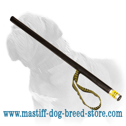 Dog training stick of leather covered plastic