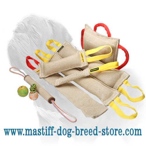 Set of extra durable bite training dog gears