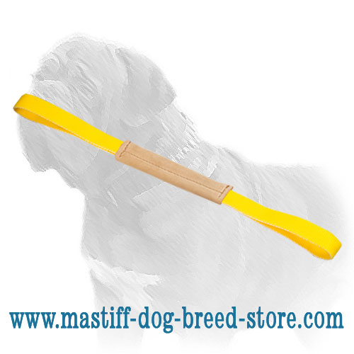 Bite tug for training young Mastiffs, 11 inch long