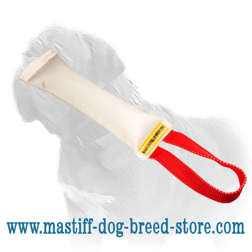 Mastiff dog Fire hose bite tug for puppy training