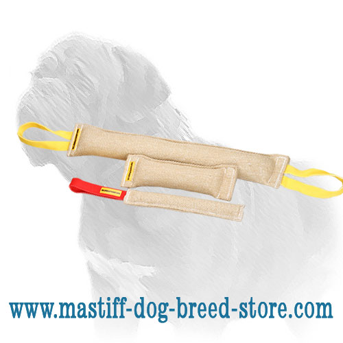 3 jute tugs for young Mastiff training