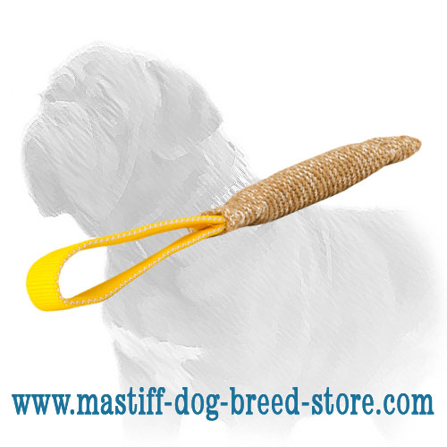 Dog bite tug for Mastiff puppies training