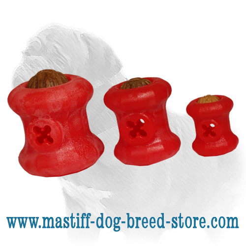 Chew toys for dogs made from foam rubber