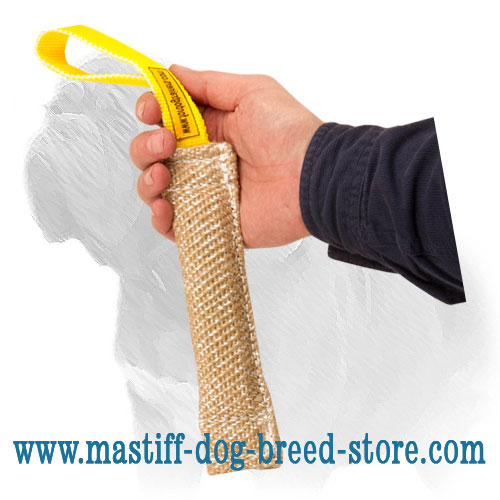 Dog bite tug for Mastiff puppy training