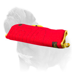 Comfy dog sleeve with soft interior