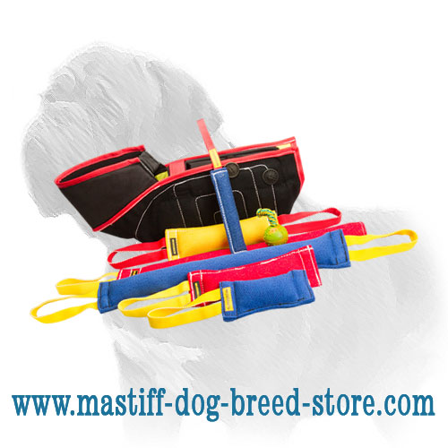 Mastiff dog training set: Frech linen bite tags, sleeve and hollow rubber ball
