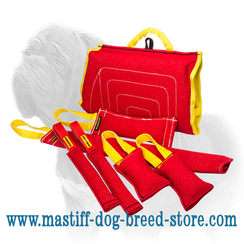 The best set for training Mastiff pups