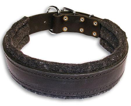 Leather Custom Dog Collar for everyday Mastiff