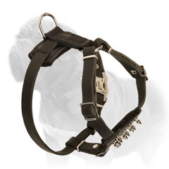 Mastiff puppy harness with felt padded chest and back parts