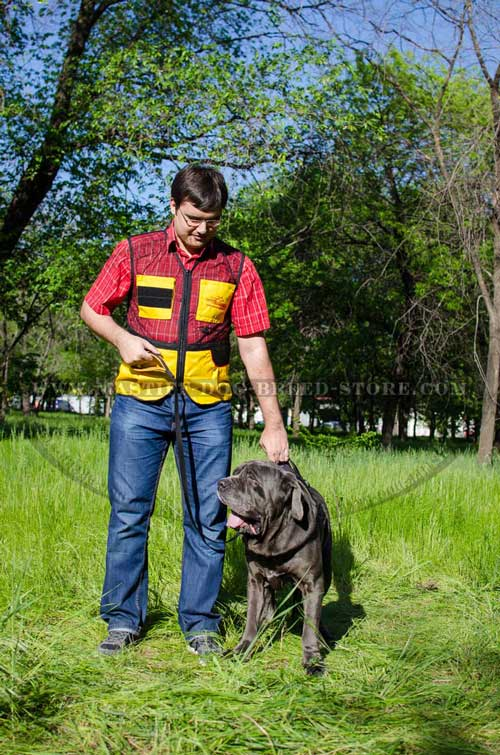 Nylon Mastiff Harness with Handle