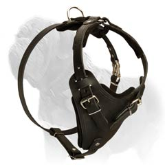 Leather Easy Walk Agitation Harness
