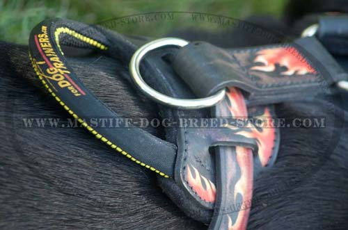 Mastiff Leather Harness Fast Grab Handle for Easier Control