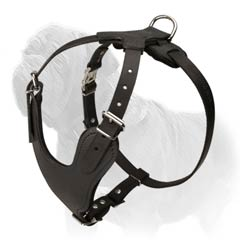 Laconic design Mastiff harness