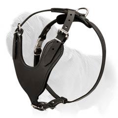 easy walk harness