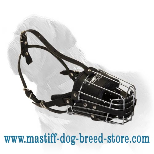 Maximally Comfortable, Safe and Reliable Mastiff Dog Muzzle for any Occasion