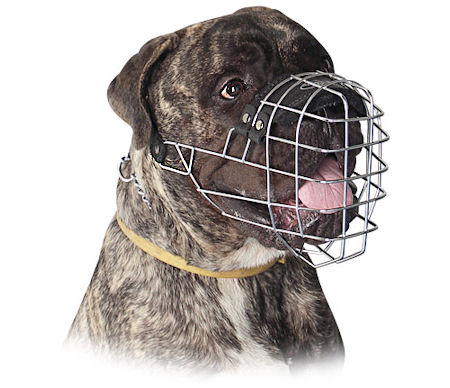 Big Wire Basket Dog Muzzle for Bullmastiff