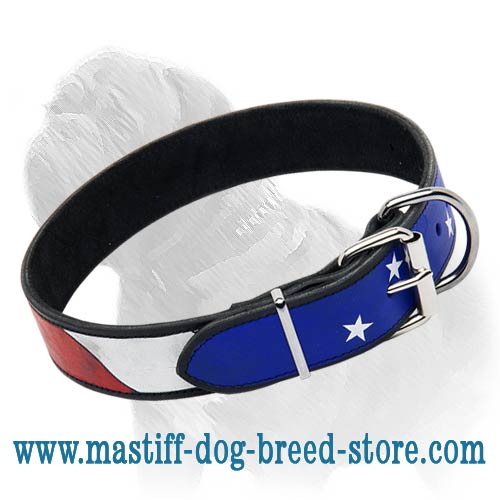 Hand-Painted Leather Collar for Stylish Wearing of Your Mastiff