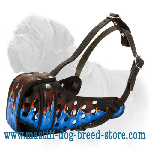 Mastiff Agitation Muzzle - Hand Painted with Non-Toxic natural Paints