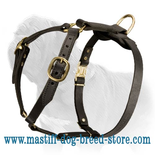 Fantastic Light Weight Leather Mastiff Harness