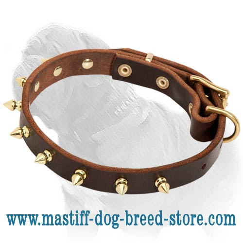 Fashionable Leather Dog Collar with Brass Spikes for Mastiff Walking