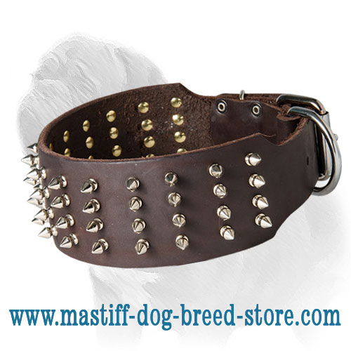 Spiked Mastiff Dog Collar Extra Wide
