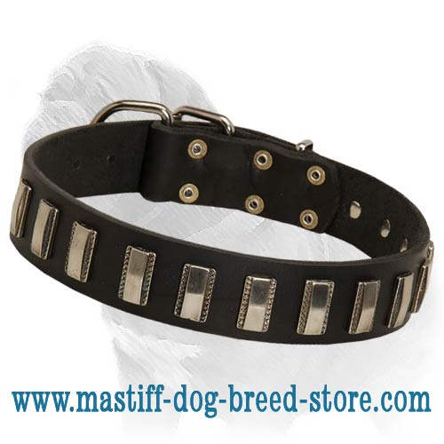 Ornament Dog Collar made of leather for Mastiff