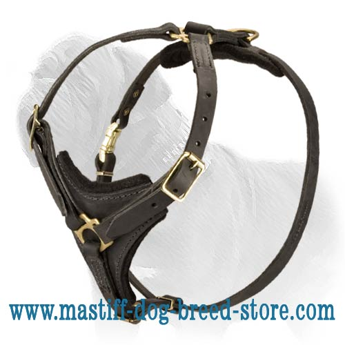 Exquisite Multifunctional Leather Mastiff Harness with Padded Chest Plate