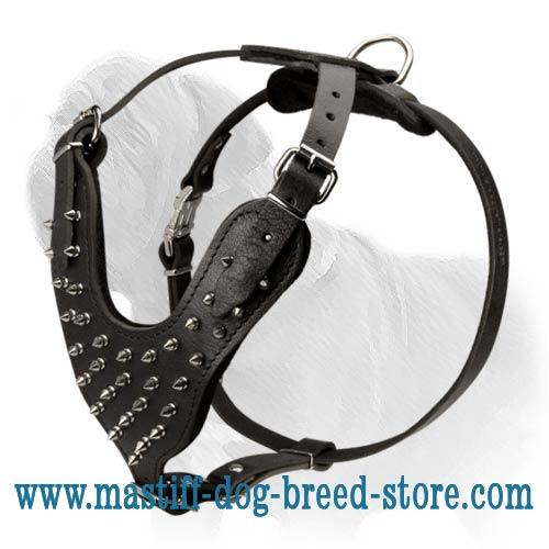 Top Notch Leather Mastiff Harness with Gorgeous Silvery Spikes