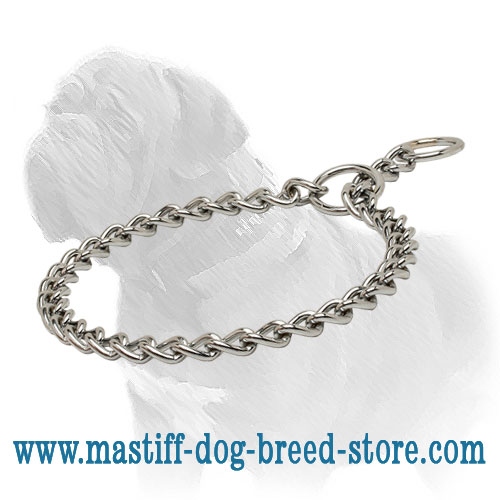 Mastiff Dog Chrome Plated Slip Collar for Obedience Training