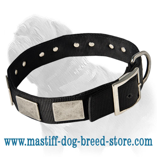 Training Nylon Mastiff Collar For All Weather Conditions