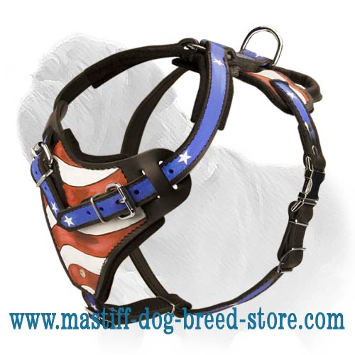 Mastiff Harness for Attack Work Painted with Patriotic Symbols