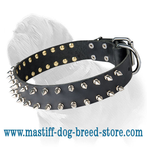 Mastiff Leather Spiked Dog Collar for Daily Walks
