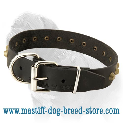 Adjustable Wide Leather Dog Collar for Mastiff Walking