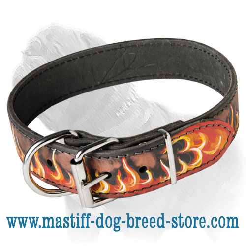 Handpainted Leather Dog Collar for Mastiff Walking and Training