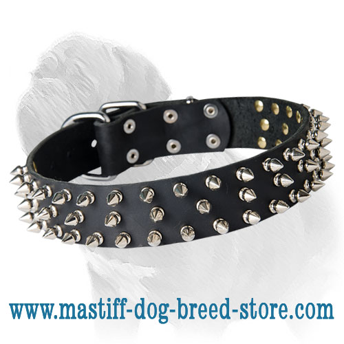 Custom Super Spiked Leather Mastiff Collar -3 Rows of Spikes