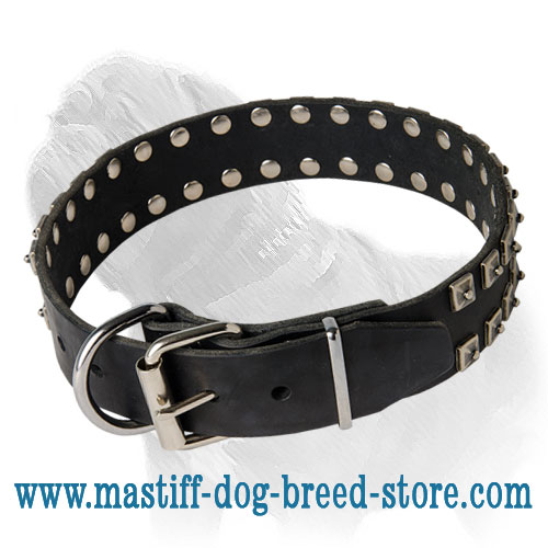 Mastiff Leather Collar with Dotted Studs for Daily Walking