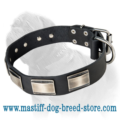 Leather Mastff Collar with Silvery Nickel Carved Plates for Daily Walks