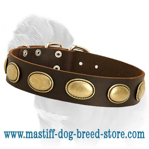 Walking Leather Dog Collar with Vintage Oval Plates of Gold Color