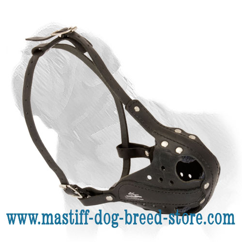 Universal Leather Dog Muzzle for Mastiff Training/Walking/Attack Work