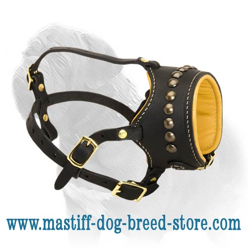 Breathe and Drink Water Leather Mastiff Muzzle