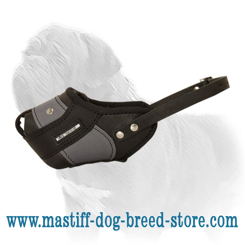 Leather and Nylon Mastiff Muzzle for Agitation Work
