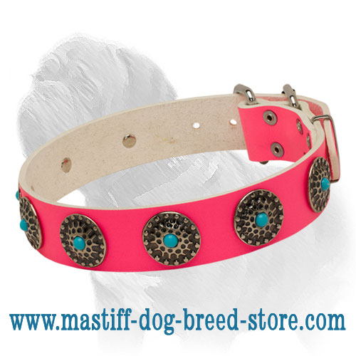 Pink Leather Collar with Blue Stones for Mastiff Fashionable Walking