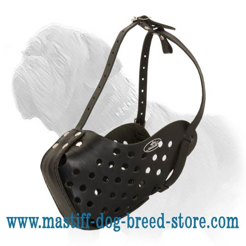 Professional Agitation Muzzle for Training and Walking your Mastiff