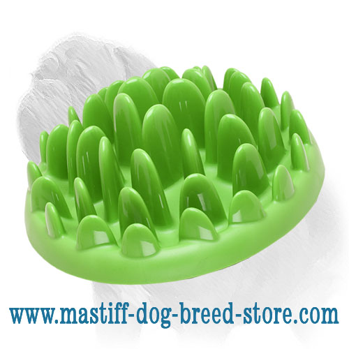Small Interactive Dog Feeder for Mastiff Puppies