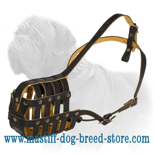 Padded leather Super Ventilation dog muzzle for all Mastiffs