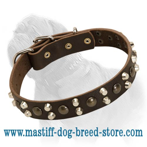Fabulous Leather Collar with Pyramids and Studs - The Pink of Dog Fashion