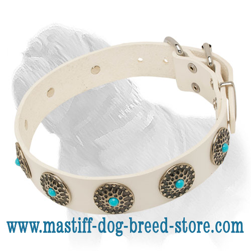 White Leather Mastiff Collar with Blue Stones for Daily Walking