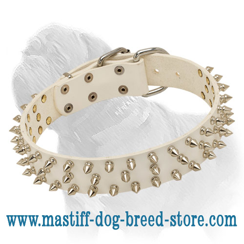 Extra Spiked White Leather Dog Collar for Mastiff Fashionable Walking