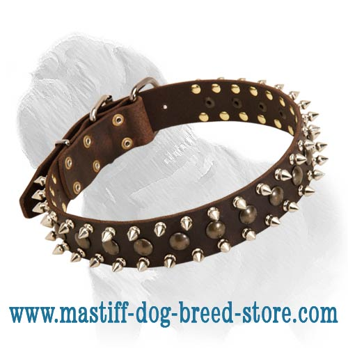 Gorgeous Leather Collar Decorated with Studs and Spikes for Training and Daily Walks of Your Mastiff